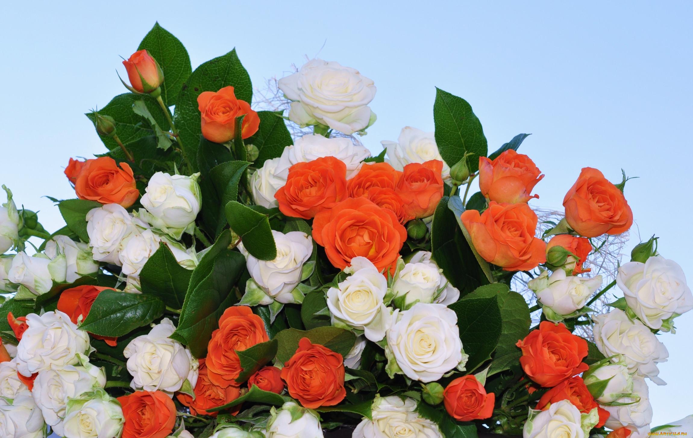 Картинки со словами для тебя с букетами цветов